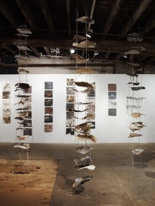 Installation view of Tending to Decomposition
