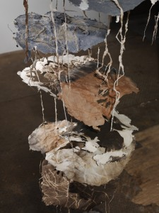 Tending to Decomposition: Suspended 3 (detail)